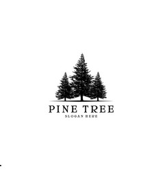 pine tree logo design inspiration vector image
