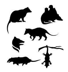 Silhouettes of a opossum vector