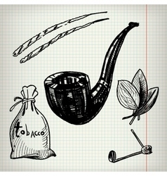 Set of sketches Tobacco vector image vector image