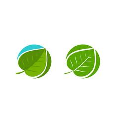 Green leaf logo natural or organic symbol vector