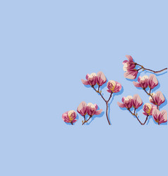 magnolia flowers spring beautiful card vector image
