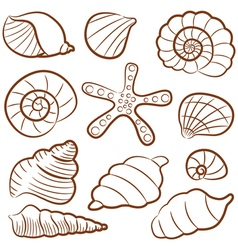 Outline seashell set vector