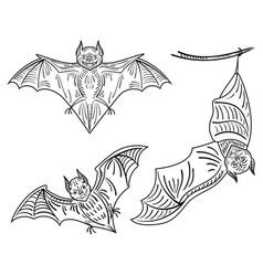 Set bats a collection terrible bats vector