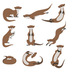 Cute otter set funny animal character in various vector