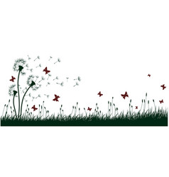 dandelions with butterflies vector image
