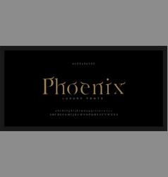 Elegant alphabet serif font and number luxury vector