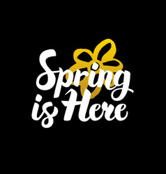 spring is here handwritten calligraphy vector image