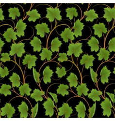 vine background vector image vector image