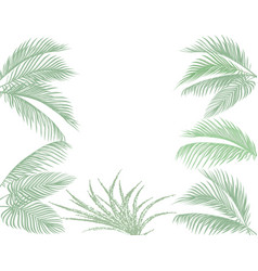 leaves of tropical palms in pastel tones set vector image vector image
