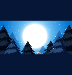 a winter night background vector image