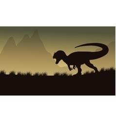 Allosaurus silhouette in fields vector