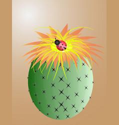 Banner cute hand drawn cactus print vector