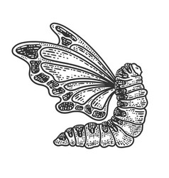 Caterpillar with butterfly wings sketch vector