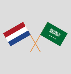 Flags of netherlands and ksa vector