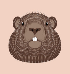 Groundhog day concept national holiday in the usa vector