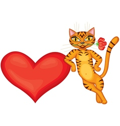 Tabby cat gives heart vector