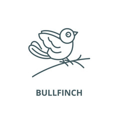 bullfinch line icon bullfinch outline vector image