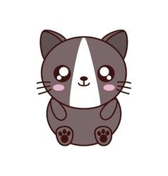 Cat kawaii cute animal icon vector