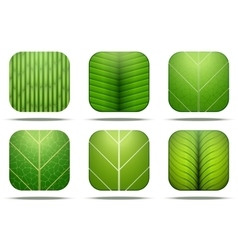 Leaves Square Icon vector image