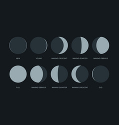 moon phases night symbols for calendar vector image