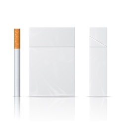 Realistic blanks of cigarette pack vector image