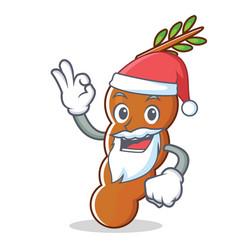 Santa tamarind mascot cartoon style vector