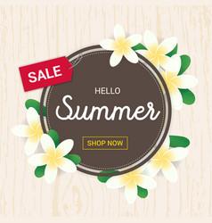 summer greeting season with plumeria flowers vector image vector image