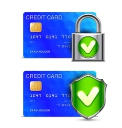 Credit Card Security vector image vector image