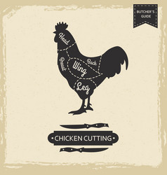 butchers library vintage page - chicken cutting vector image
