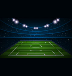 empty football field arenal stadium vector image