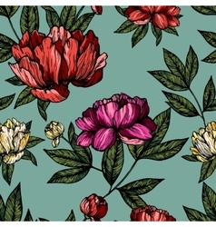 Flowers pions with foliage pattern vector