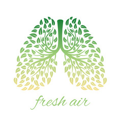 Lhealthy lungs with foliage vector