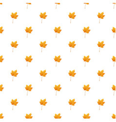 maple leaf pattern seamless vector image