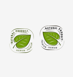 Natural product logo leaf symbol or label vector
