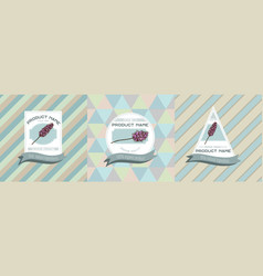 three colored labels with peppermint vector image