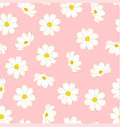 White cosmos flower on pink background vector