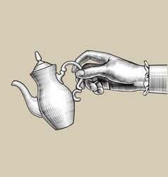 womans hand with a coffee pot vector image