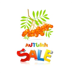 Colorful Autumn Sale Theme With Rowan Berries vector image