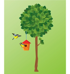 green tree tit birds and nesting box vector image vector image