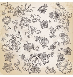 Beautiful floral elements vector image vector image