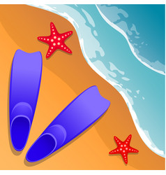 beach background flippers and starfish on the vector image