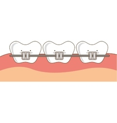 Dental healthcare orthodontics icon vector