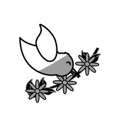 Dove branch flowers symbol image vector