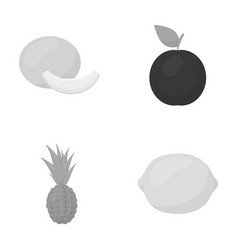 Melon plum pineapple lemonfruits set vector