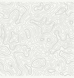 topographic map seamless pattern topography line vector image