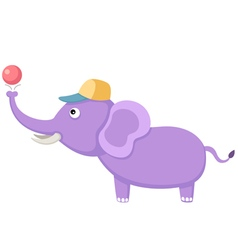 elephant with ball vector image