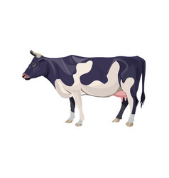 Black and white spotty cow vector