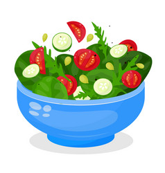 Bowl vegetable salad fresh vegetarian food vector