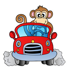 monkey in car vector image