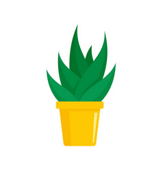 Office succulent pot icon flat style vector